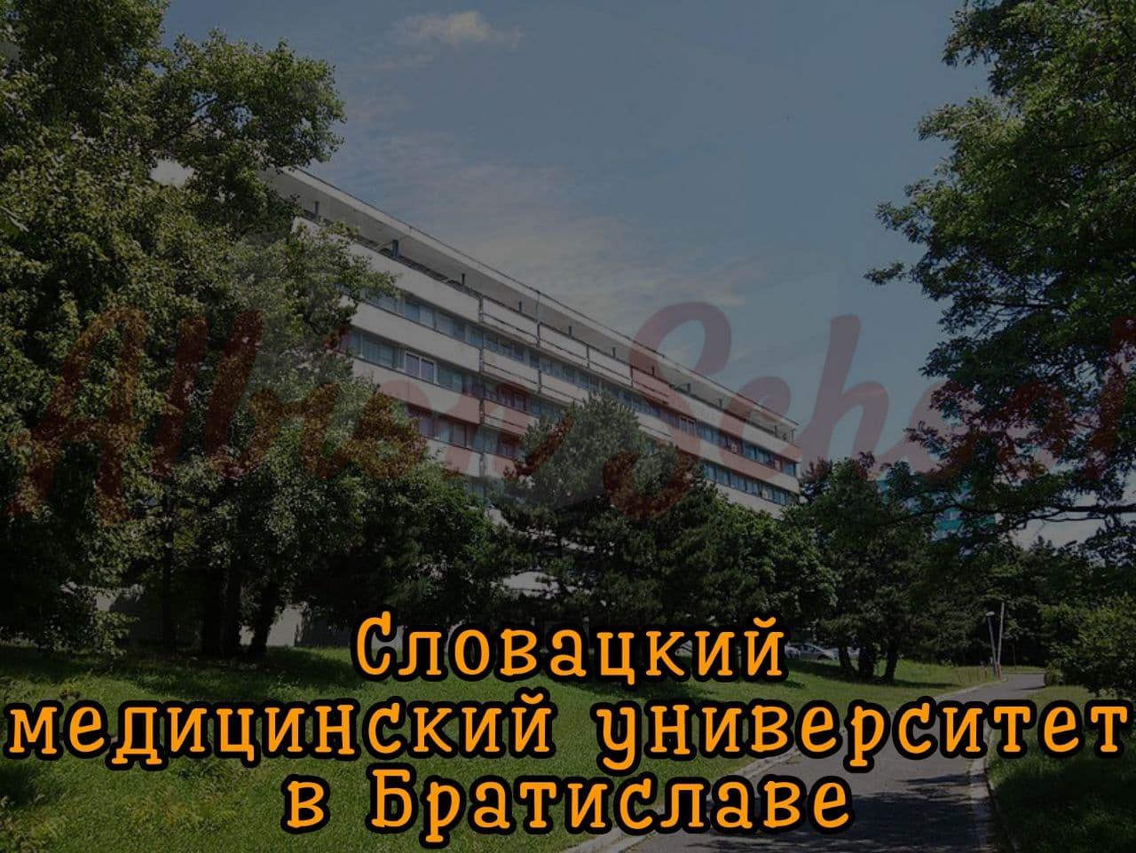 Словацкий медицинский университет в Братиславе Словакия